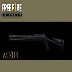 IM1014 In Free Fir
