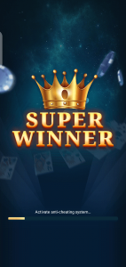 Super Winner
